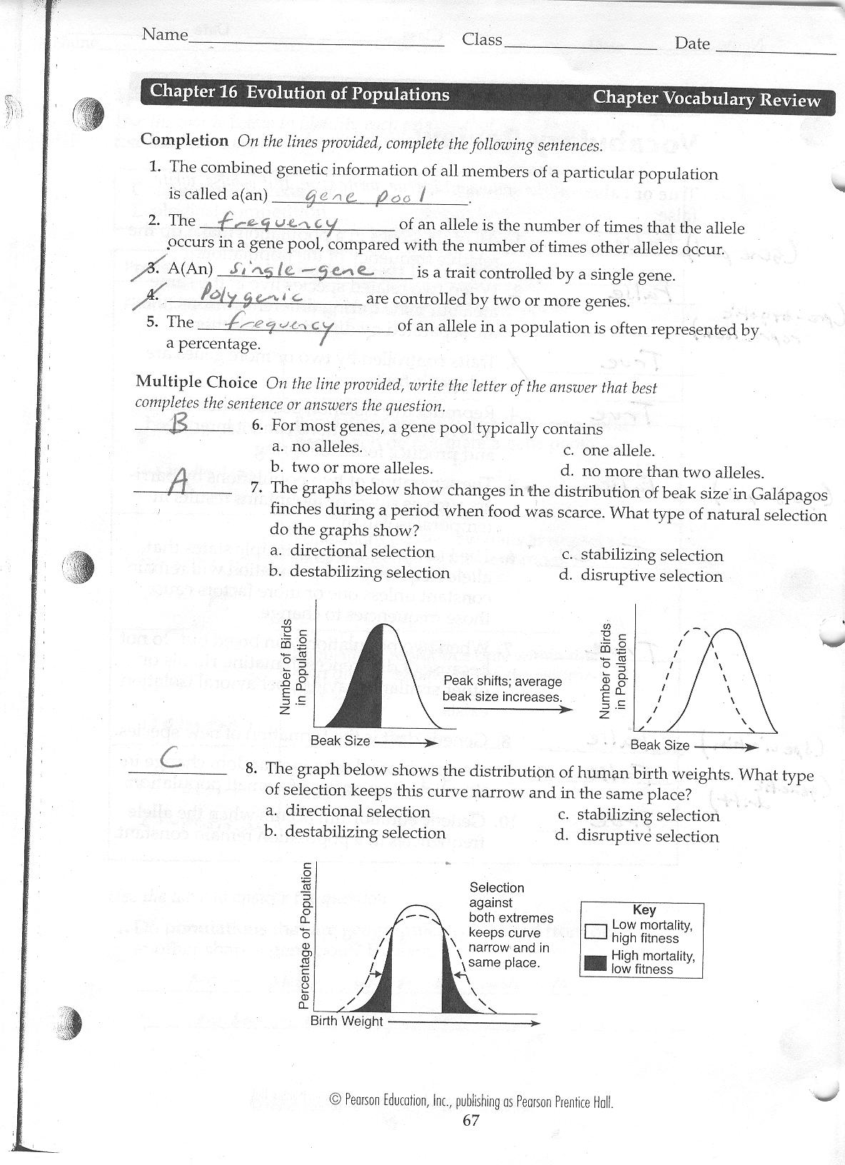 straubel Biology 2010 2011 – Biochemistry Worksheet Answers