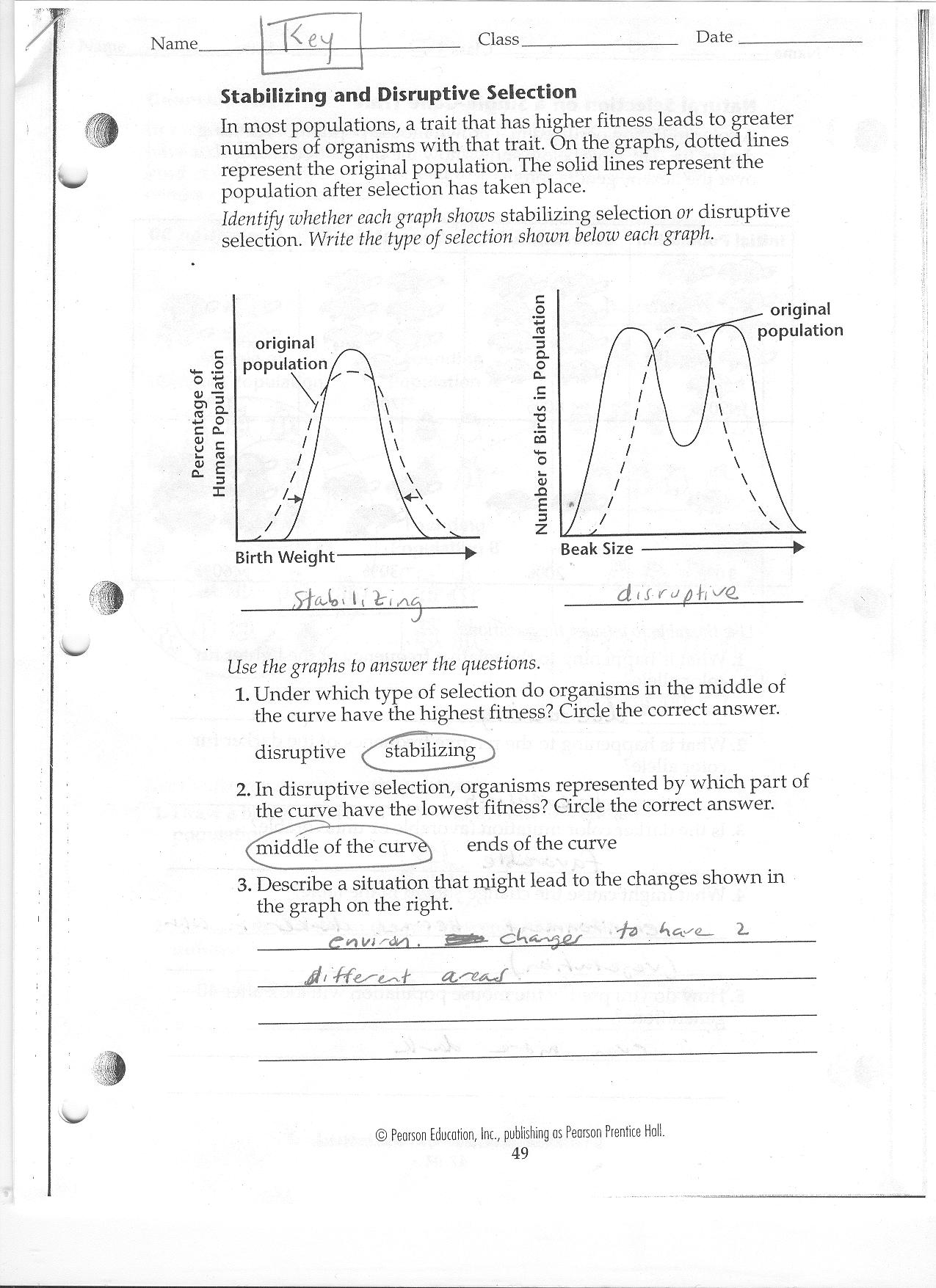 Free Worksheet Evolution Worksheet biochemical evidence for evolution worksheet straubel biology 2010 2011